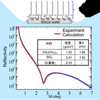 図6 有機単分子膜の分子モデルと反射率測定結果