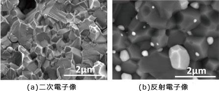 図7 二次電子像と反射電子像の例(試料:アルミナ/ ニッケル複合材料)