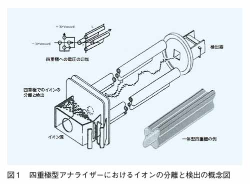 四重極型アナライザーにおけるイオンの分離と検出の概念図