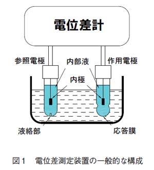 電位差測定装置の一般的な構成