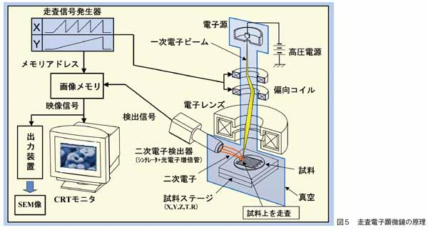 走査電子顕微鏡の原理
