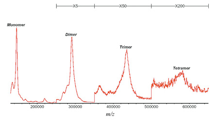 図3 MALDI-TOF-MS による免疫グロブリンG(150kDa)のマススペクトル