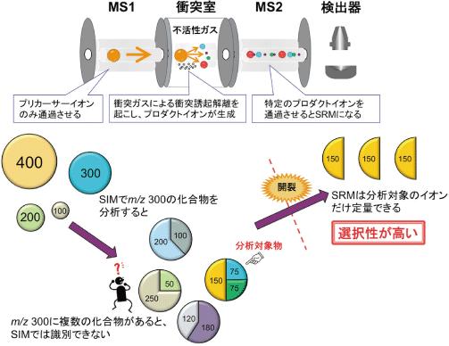 選択反応検出(SRM)法の原理